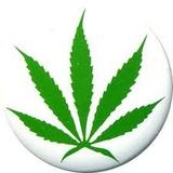 Medical Marijuana Regulation and Safety Act marijuana license application